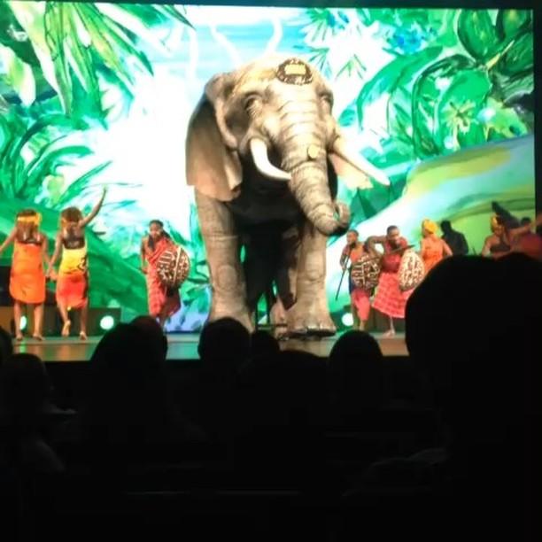 Musical expierience 🐘  Afrika Afrika 2019 . Krasser Elefant! . Kamerakind Devin 🎥 . #afrikaafrika #afrika #musical #elefant #onstage #stage #konzerthaus #artisten #artist #dance #choreography #ontour #tourproduktion #schweiz #ch #basel #kamerakind
